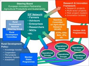 EIPs: Una oportunidad de oro para la innovación en agricultura sostenible