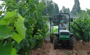 El cambio de concepto de la agricultura: de bien privado a público