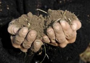 Agricultor activo, derechos de pago único, años de referencia… las dudas de la PAC